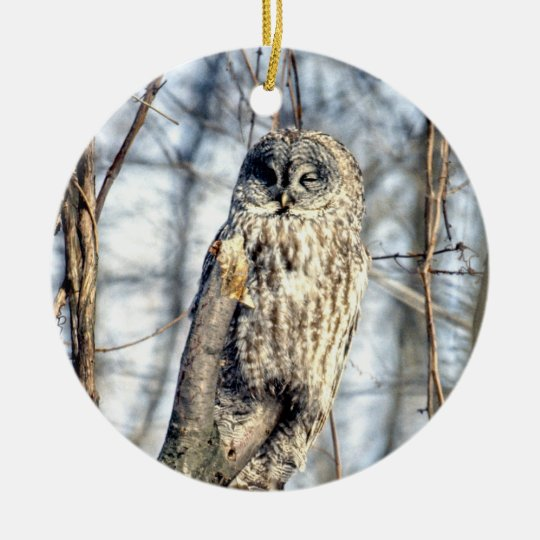 Great Gray Owl - Creamy Brown Watcher 2 sides Ceramic Ornament