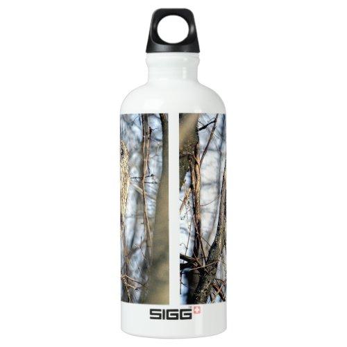 Great Gray Owl - Creamy Brown Watcher Aluminum Water Bottle