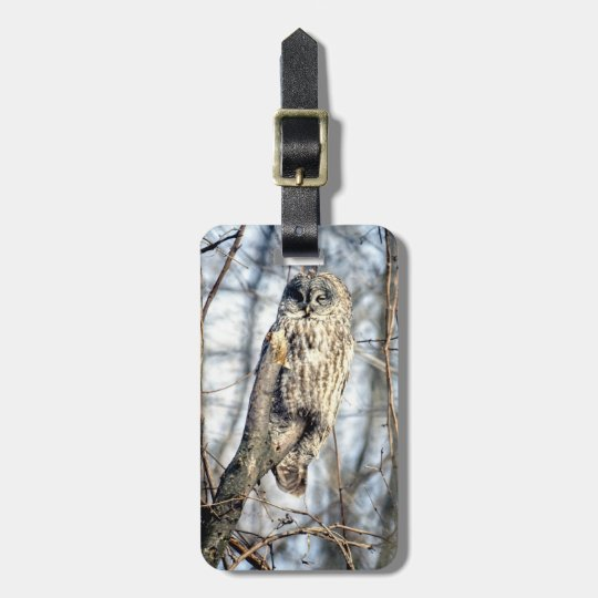 Great Gray Owl, Creamy Brown Watcher Bag Tag