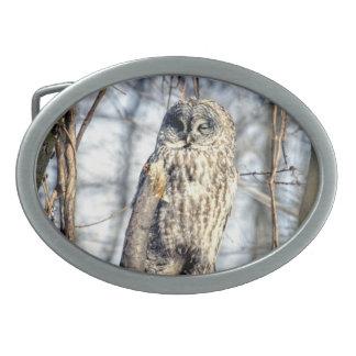 Great Gray Owl, Creamy Brown Watcher Belt Buckles