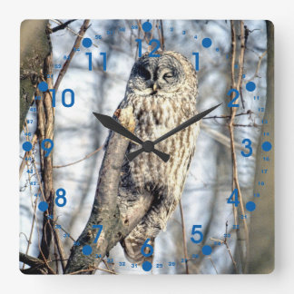 Great Gray Owl, Creamy Brown Watcher Square Wallclock