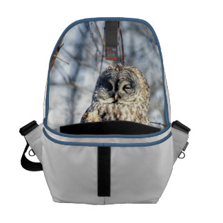 Great Gray Owl - Creamy Brown Watcher Courier Bag