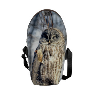 Great Gray Owl, Creamy Brown Watcher Courier Bags