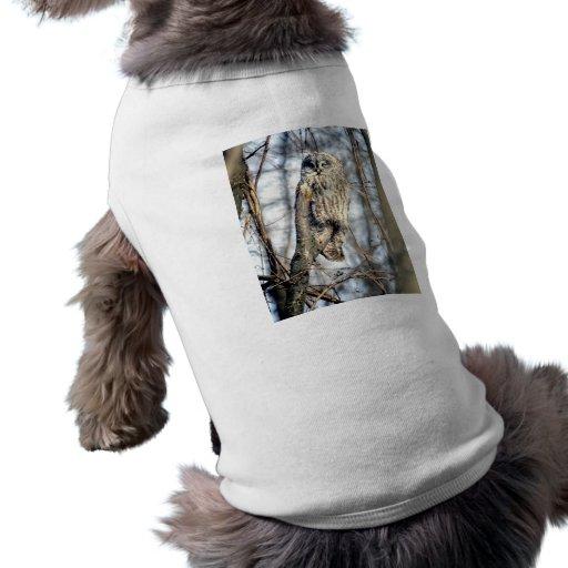 Great Gray Owl - Creamy Brown Watcher Doggie Tee Shirt