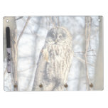 Great Gray Owl, Creamy Brown Watcher Dry Erase Boards