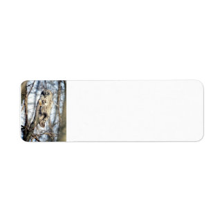 Great Gray Owl - Creamy Brown Watcher full Return Address Label