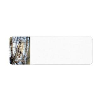 Great Gray Owl - Creamy Brown Watcher full Return Address Label