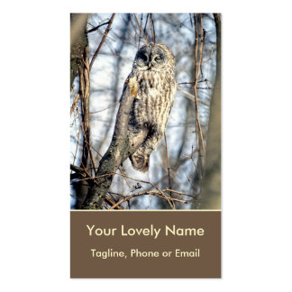 Great Gray Owl, Creamy Brown Watcher in Nature Double-Sided Standard Business Cards (Pack Of 100)