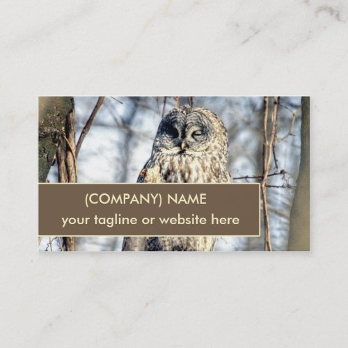 Great Gray Owl, Creamy Brown Watcher in Tree Business Card