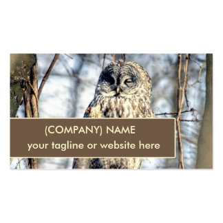 Great Gray Owl, Creamy Brown Watcher in Tree Double-Sided Standard Business Cards (Pack Of 100)
