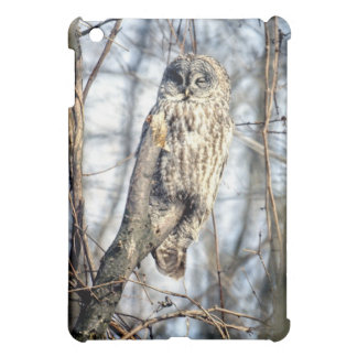 Great Gray Owl - Creamy Brown Watcher Case For The iPad Mini