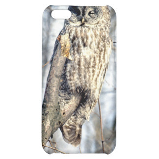 Great Gray Owl - Creamy Brown Watcher Cover For iPhone 5C
