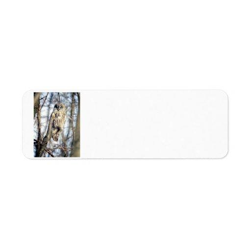 Great Gray Owl - Creamy Brown Watcher Labels