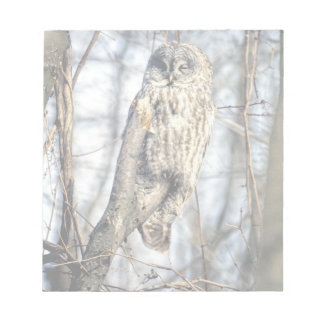 Great Gray Owl - Creamy Brown Watcher Notepad