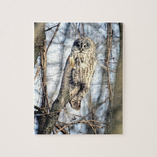 Great Gray Owl - Creamy Brown Watcher Puzzle