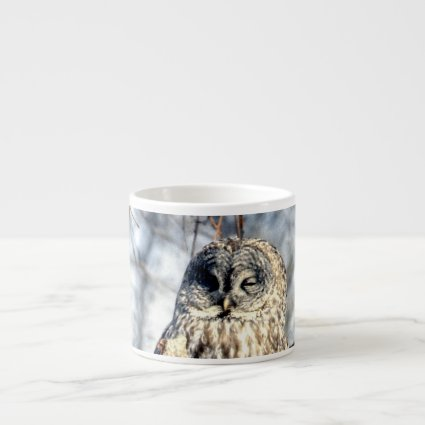 Great Gray Owl - Creamy Brown Watcher Espresso Cups