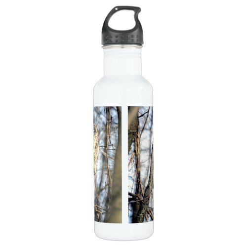 Great Gray Owl - Creamy Brown Watcher Water Bottle