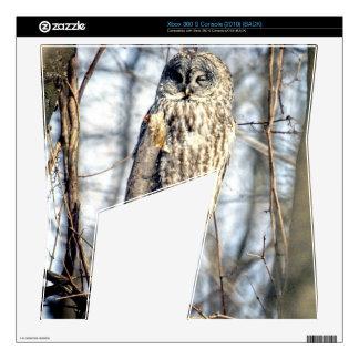 Great Gray Owl, Creamy Brown Watcher Xbox 360 S Skins