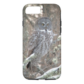 Great Gray Owl iPhone 7 Case
