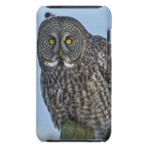 Great Gray Owl On a Fence Wildlife Photo Portrait iPod Touch Case