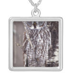 Great Gray Owl on an Aspen tree Silver Plated Necklace