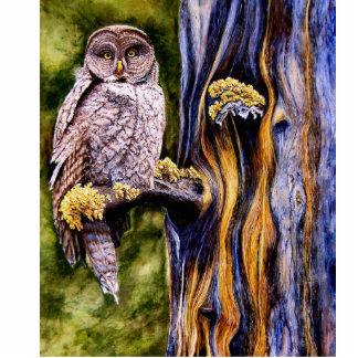 Great Gray Owl Photo Sculpture