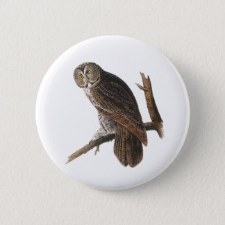 Great Gray Owl Pinback Button