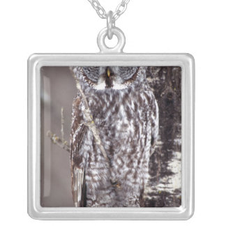 Great Gray Owl, Pine City MN perched on Aspen Square Pendant Necklace