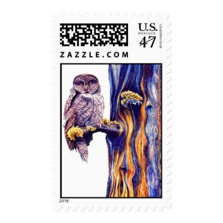 Great Gray Owl Postage Stamp
