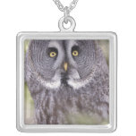 Great Gray Owl (Strix nebulosa) Silver Plated Necklace
