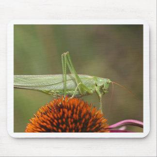 Great Green Bush-Cricket  (Tettigonia viridissima) Mouse Pad