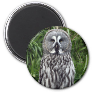 Great Grey Owl 2 Inch Round Magnet