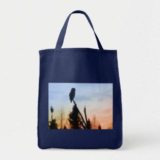 Great Grey Owl at Sunset Tote Bag