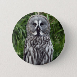 Great Grey Owl Button