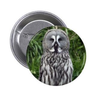 Great Grey Owl 2 Inch Round Button