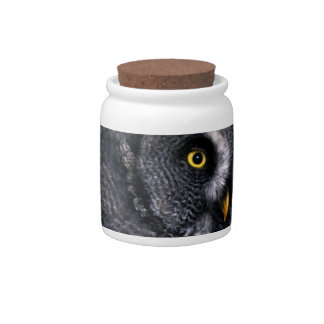 Great Grey Owl Candy Dish