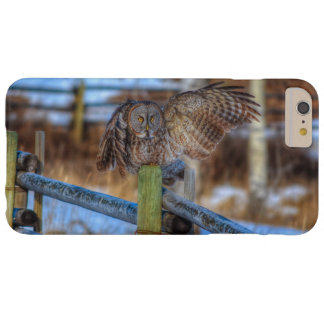 Great Grey Owl & Fence Wildlife Photo Portrait Barely There iPhone 6 Plus Case
