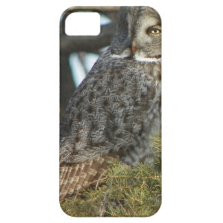 Great Grey Owl Photo Gift iPhone SE/5/5s Case