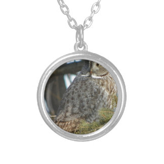 Great Grey Owl Photo Gift Silver Plated Necklace