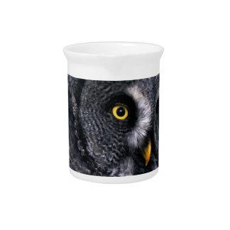 Great Grey Owl Pitcher