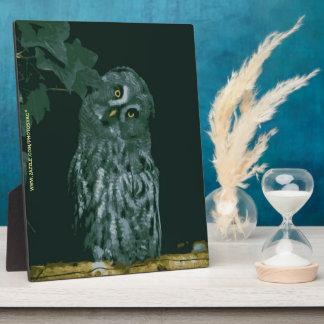 Great Grey Owl Plaque