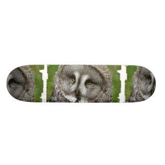 Great Grey Owl Skateboard