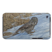 Great Grey Owl & Snow Wildlife Photo Portrait iPod Touch Cover