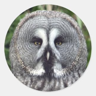 Great Grey Owl Classic Round Sticker
