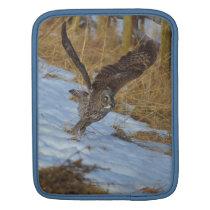 Great Grey Owl Taking Off from Snow Wildlife iPad Sleeve