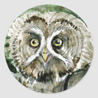 Great Grey Owl watercolor large head Stickers