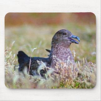 Great gull mousepads
