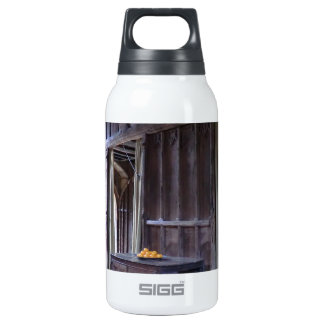Great Hall at Haddon Hall Insulated Water Bottle