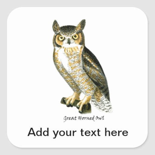 Great Horn Owl Square Sticker