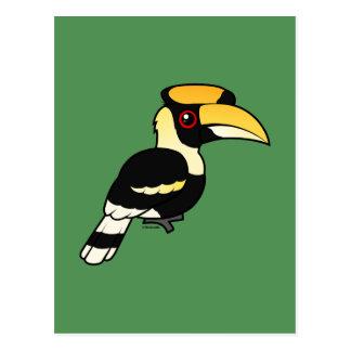 Great Hornbill Postcard